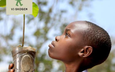 Vi planterar träd med Vi-Skogen